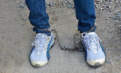 Apresan a dominicano acusado de tráfico de drogas y conspiración