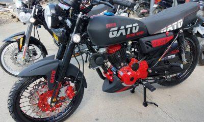 Gato Motor