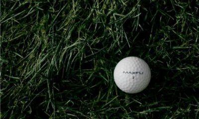 70318-golf
