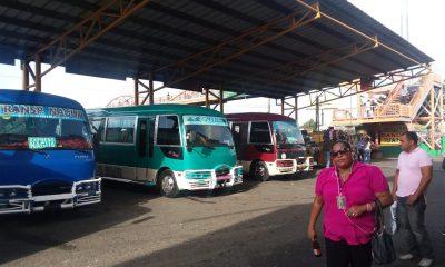 25b4976e-bbc33780-autobuses-del-nuevo-foto