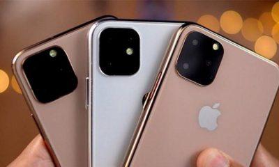 iPhone-11-1-800x450