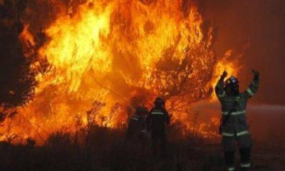 e912e8af-20191117030315-varios-incendios-consumen-cerca-de--tn0