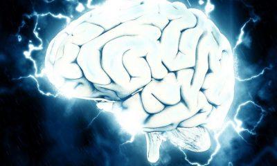 Abaratan la medición del flujo sanguíneo del cerebro con luz infrarroja
