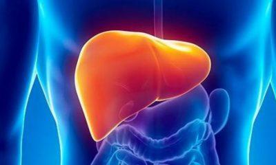 Conozca cuáles son los principales enemigos del hígado